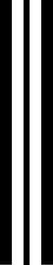 """9"""" triple rally stripe"""