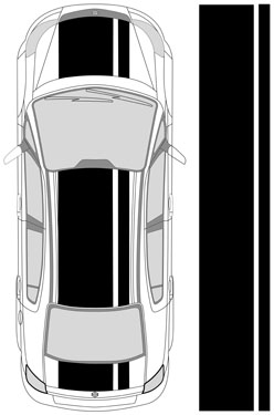 "31"" Dual Racing Stripes"