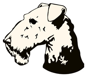 Airedale Terrier Head