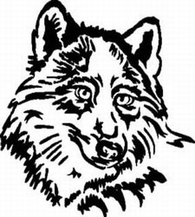 Wolf Head 1