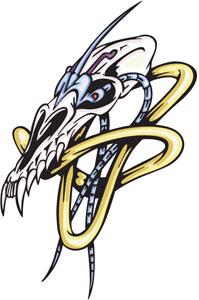Skull 24